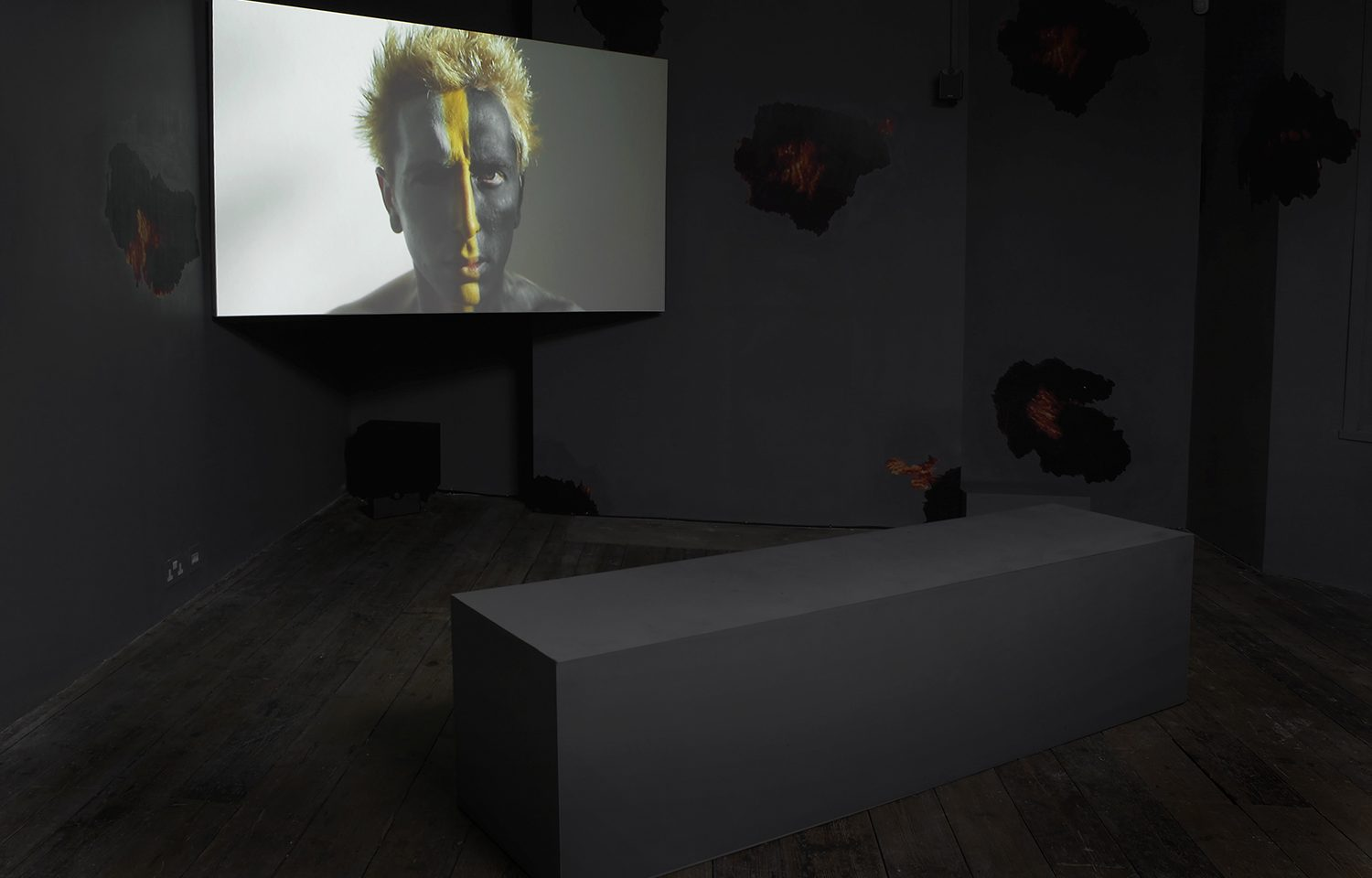 Installation view of Oh wicked flesh!. Image courtesy of the artist and the South London Gallery. Photo: Andy Keate