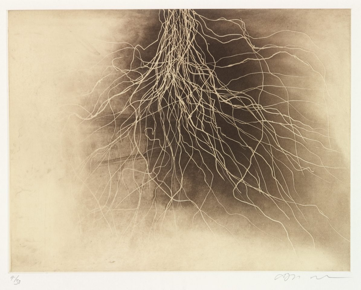 <p>Anish Kapoor, <em>untitled 8</em>, 1994-95, etching</p>