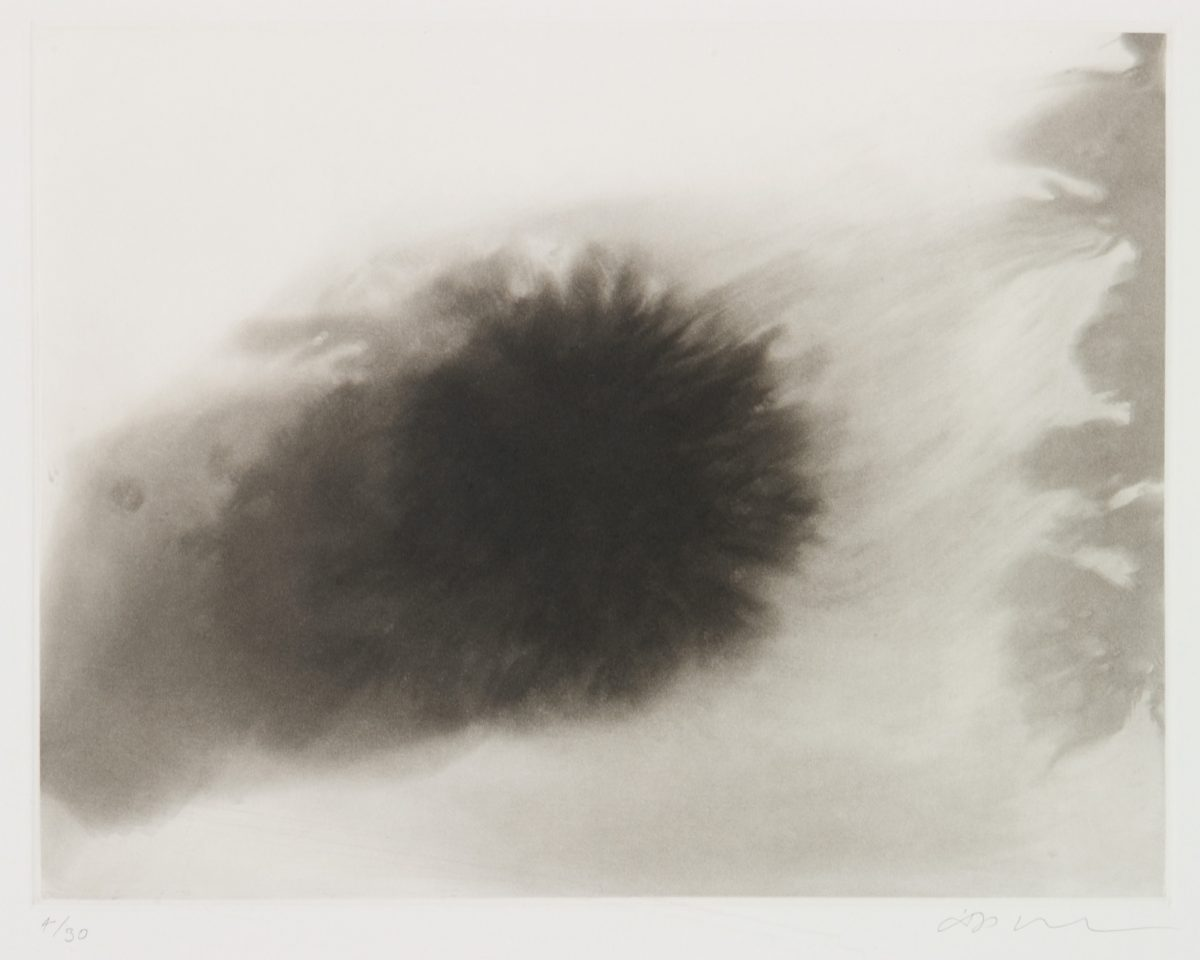 <p>Anish Kapoor, <em>untitled 9</em>, 1994-95, etching</p>