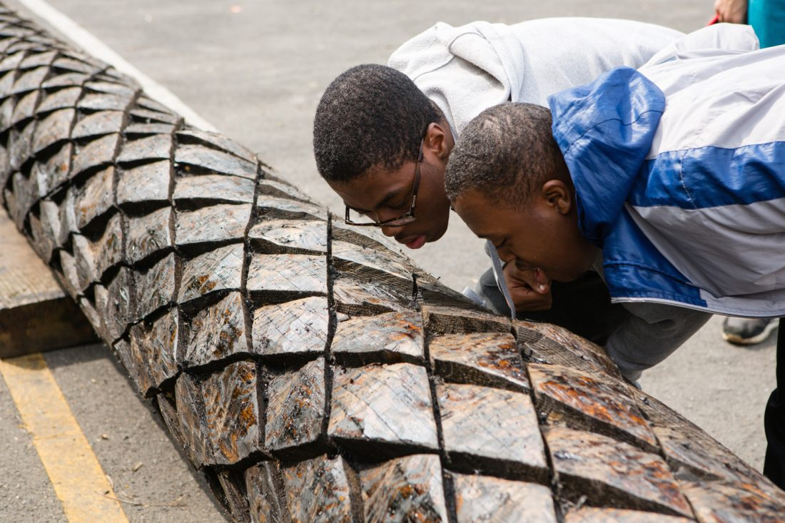 <p>Two young people from Highshore School inspecting the douglas fir tree's trunk as part of Heather and Ivan Morison's <em>Shadow Curriculum</em>, 2013-2015. Photo: Wig Worland</p>