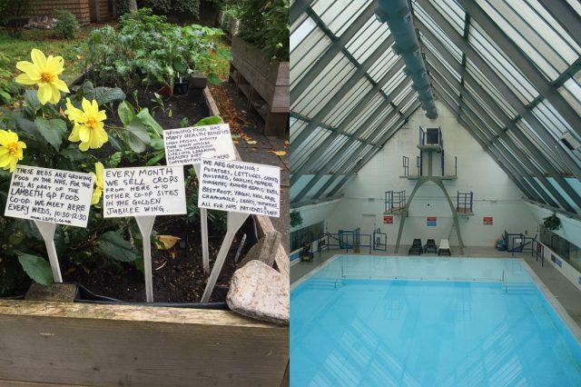 Peckham Experiment: Pool of Information