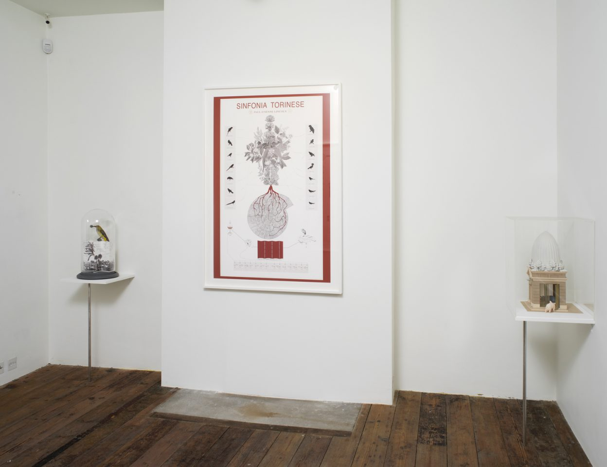 Installation view from Paul Etienne Lincoln's 2012 exhibition An Aurelian Labyrinth and other Explications. Photo: Andy Keate