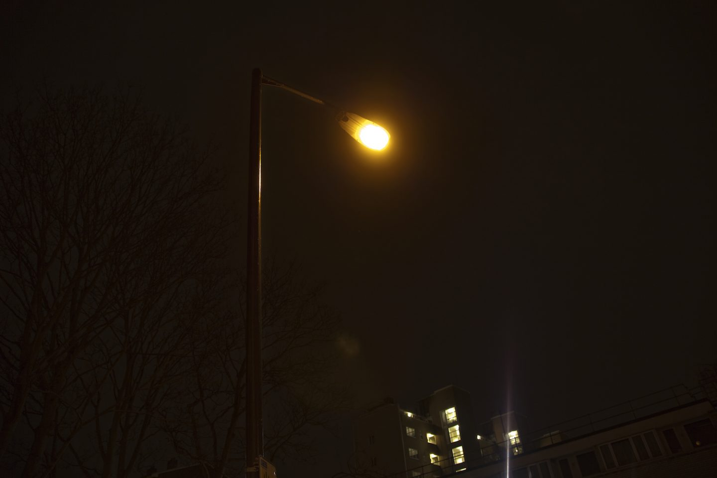 Lamppost, Light of my Life - South London Gallery