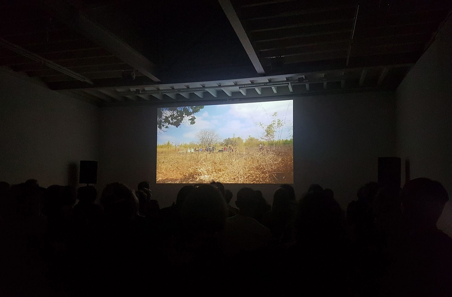 South by South screening in the Clore Studio
