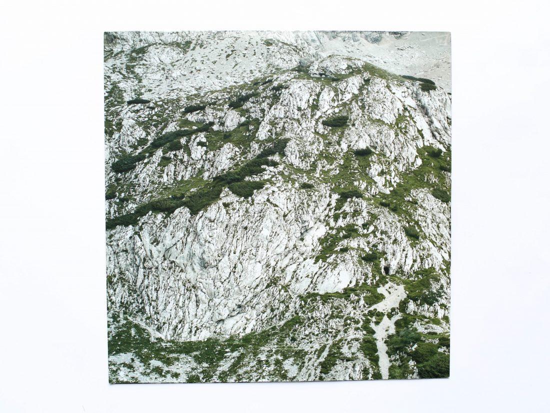 Grosse Tiergarten LP Sleeve