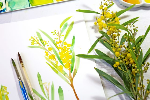 SLG Skills: An Introduction to Botanical Watercolours