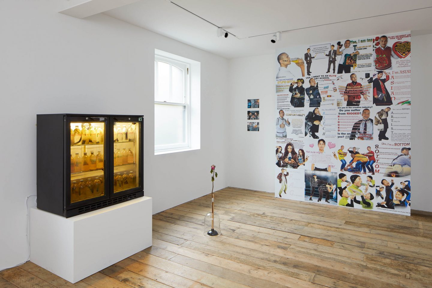Working Progress, installation view at the South London Gallery, 2020. Photo: Andy Stagg