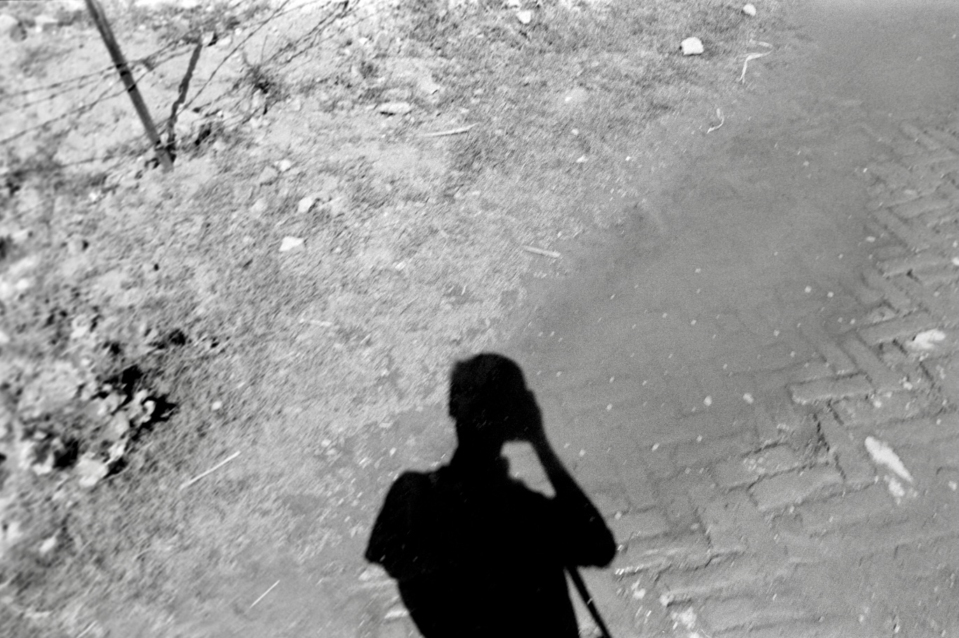 A person takes a photo of their shadow on the ground; only the top of their body is visible in shadow